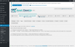 Page screenshot: Asset CleanUp → CSS/JS Load Manager → Pages