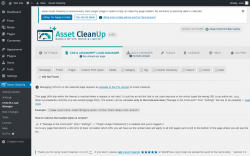 Page screenshot: Asset CleanUp → CSS/JS Load Manager →  404 Not Found