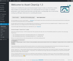 Page screenshot: Asset CleanUp → Start Optimization