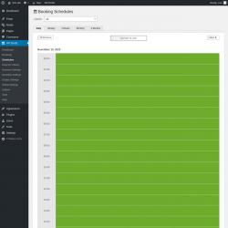 Page screenshot: WP BASE → Schedules