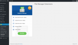 Page screenshot: WP File Manager → Extensions