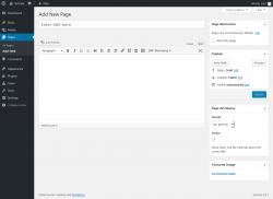 Page screenshot: Add New Page ‹ Test site — WordPress