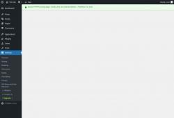 Page screenshot: Settings → Upgrade➤