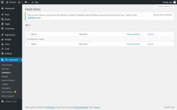 Page screenshot: RSS Aggregator → Feed Items