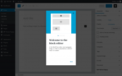 Page screenshot: Add New Post ‹ Test site — WordPress