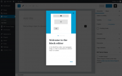 Page screenshot: Add New Page ‹ Test site — WordPress