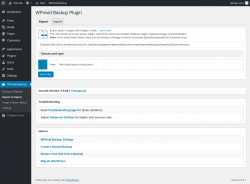 Page screenshot: WPvivid Backup → Export & Import